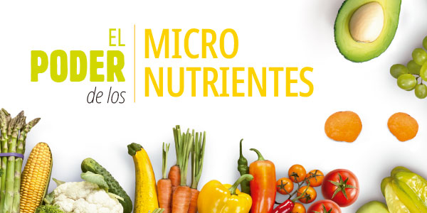 micronutrientes_home